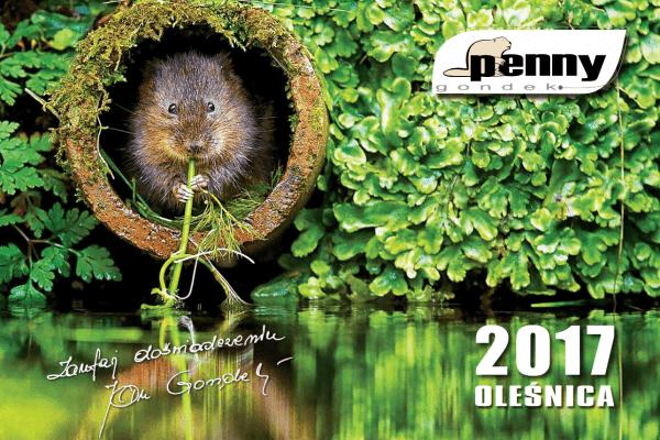 naglowek_kalendarza_penny_gondek2017