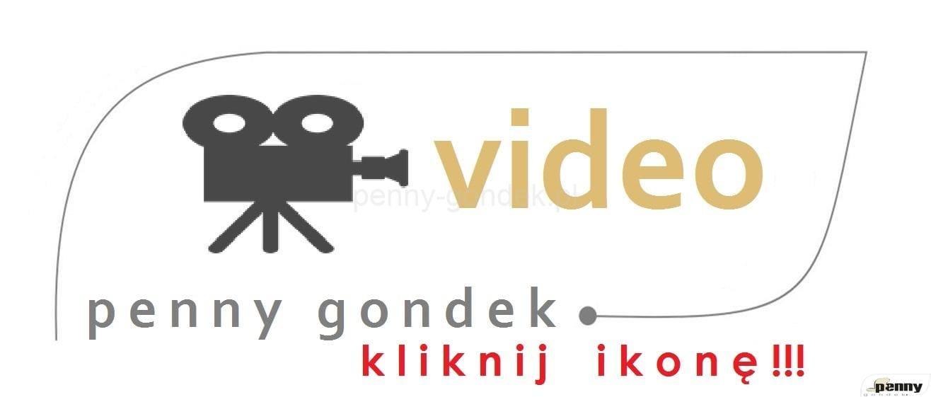 logo_PG_video